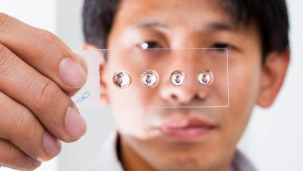 Dr Steve Lee with his droplet lens invention. Photo by Stuart Hay.