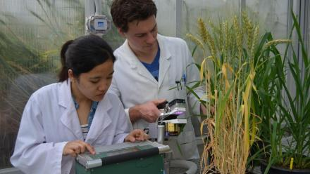 PhD candidate Florence Danila and Duncan Fitzpatrick measuring. Photo by Dr Elena Martin-Avila.