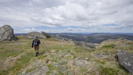 On the high plains in the Kosciusko National Park. Photo by Lannon Harley.