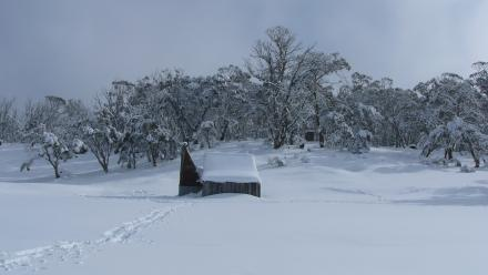 Winter snow in the Snowy Mountains, as taken by Peter Meusburger.