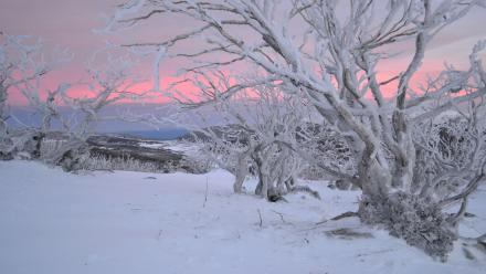 Glorious sunset photographed by Peter Meusburger at The Rams Head Range, in the Snowy Mountains.