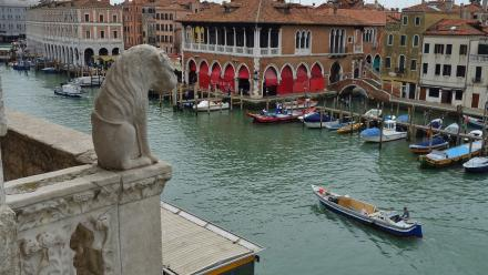 One of the magnificent views around Venice.