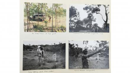 Fieldwork in Darwin 1983