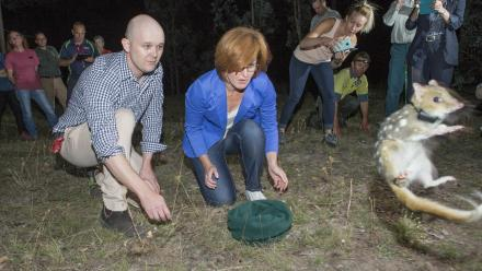 Professor Adrian Manning and ACT Minister for Territory and Municipal Services Meegan Fitzharris launch the eastern quolls at Mulligans Flat Woodland Sanctuary. Photo by Stuart Hay.