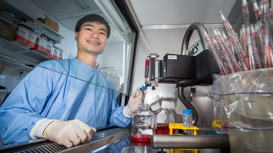 Technical officer Phuong Tran researches the mechanisms of malaria. Photo by Stuart Hay.