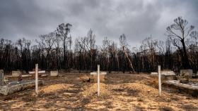 Climate change was considered a major driver of Australia's catastrophic bushfires in 2019 and 2020. Photo: Jamie Kidston