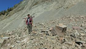 ANU researcher Ilya Bobrovskiy searches for fossils in the Zimnie Gory locality, Russia. Photo by Ilya Bobrovskiy.
