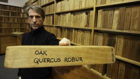 Dr Matthew Brookhouse holds a sample of the same kind of oak used for the Henry VIII painting. Photo by Jack Fox.