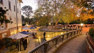 The Fellows beer garden at University House is one of the ANU hidden gems. Photo by Stuart Hay.