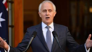 Malcolm Turnbull has used 'Agile' a lot since becoming Prime Minister.
